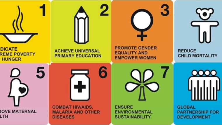 What were success factors of the Millennium Development Goals?