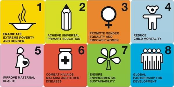 What were success factors of the Millennium Development Goals?